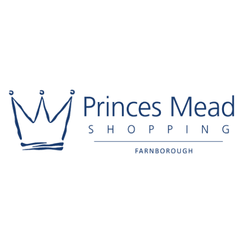 princesmead load screen 500x500 - Home