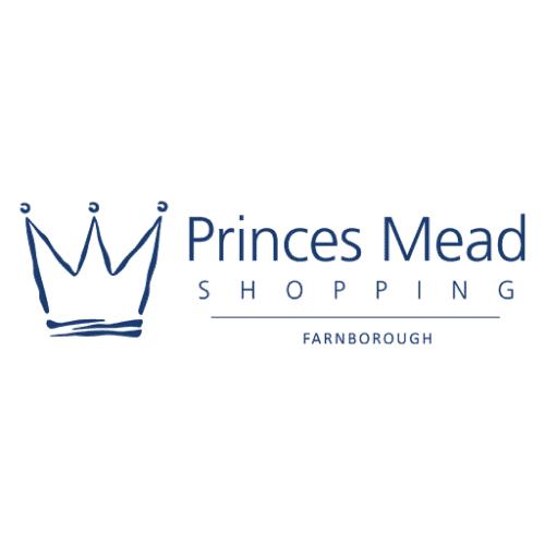 princesmead-load-screen